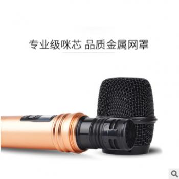 视艺星一拖二U段调频无线麦克风 手持话筒ktv专用麦克风金属话筒