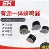 厂家供应电磁式12095有源一体蜂鸣器 有源电磁式蜂鸣器 量大价优