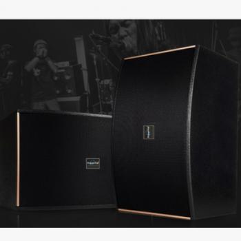 哈乐迪10寸专业卡拉OK音响专业音箱会议家庭家用学校黑色白色棕色