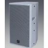 R-acoustics/瑞声300W全频两路IS-810专业音响