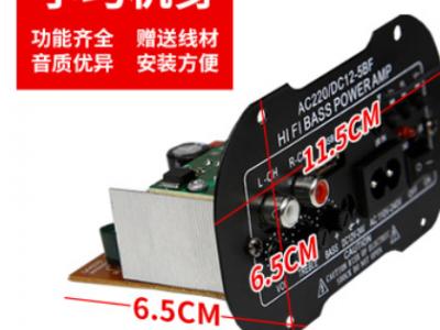 大功率低音炮功放板内置蓝牙模块音箱主板220V12V24V家庭车载适用