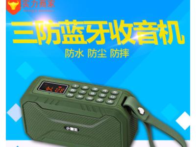 小霸王 D100无线蓝牙插卡音箱三防收音机 便携式超重低音炮大音量