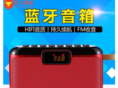 现代 T21无线蓝牙音箱大音量便携式户外家用音响车载超重低音炮