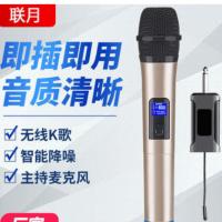 厂家批发无线话筒一拖二万能麦克风家用户外k歌家用KTV会议舞台